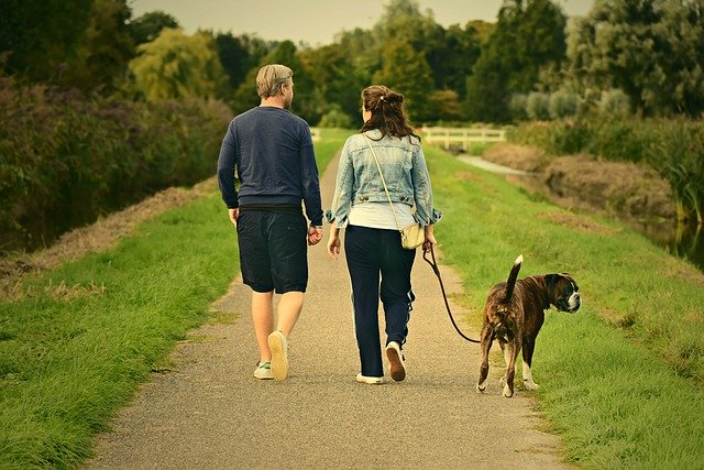 Chapter 14-A Basset Named Isaac couple with dog walking